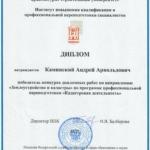 Диплом победитель конкурса дипломных работ Каминский А.А.